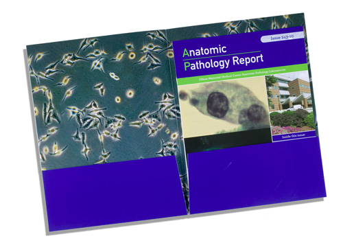 AnatomicPathology-Pocket-Folder-open